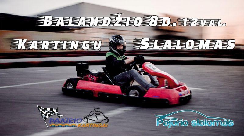 Kartingų slalomas