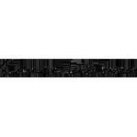 Stance Lietuva logotipas