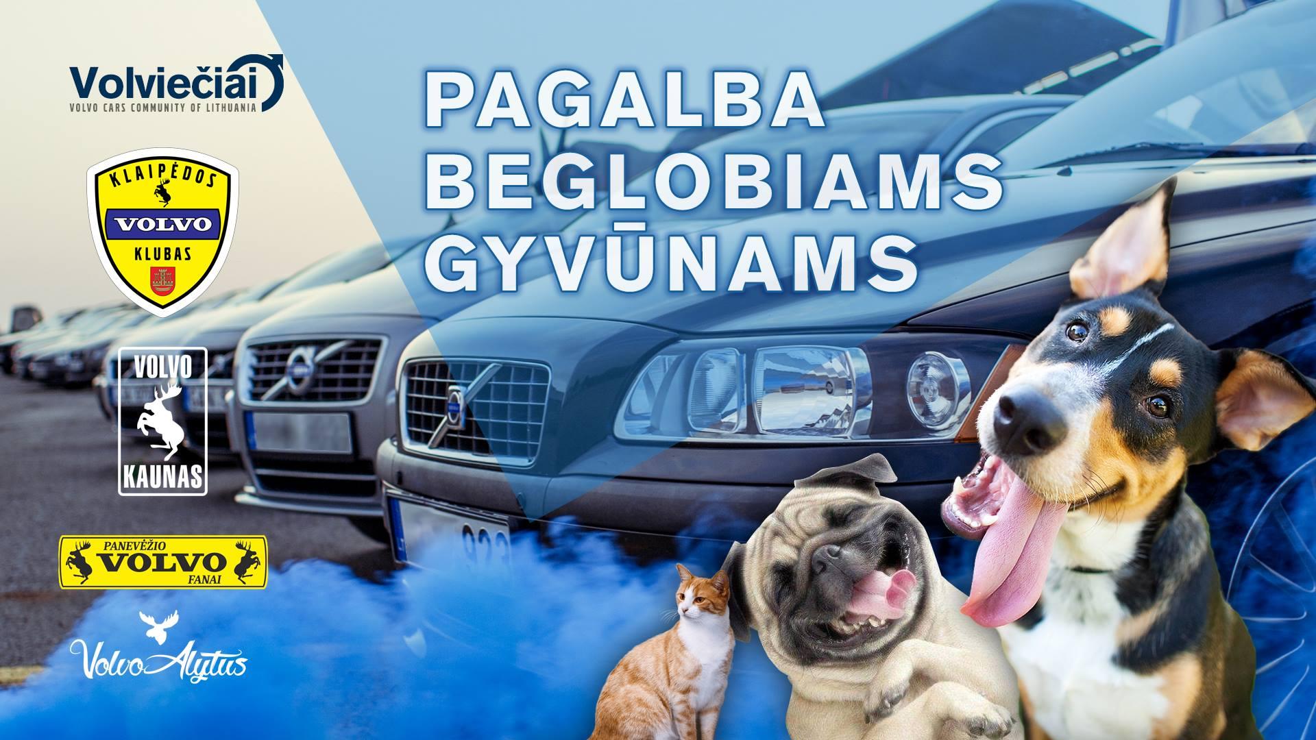 VOLVO Klaipėda Parama - Pagalba beglobiams gyvūnams